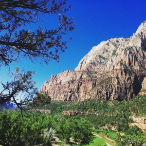 At the amazing Zion National Park, one of the natural wonders of the world.